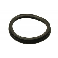 Fuel Pump Seal
