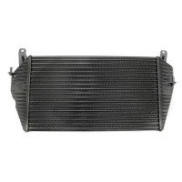BAS Hi Flow Defender Performance Intercooler